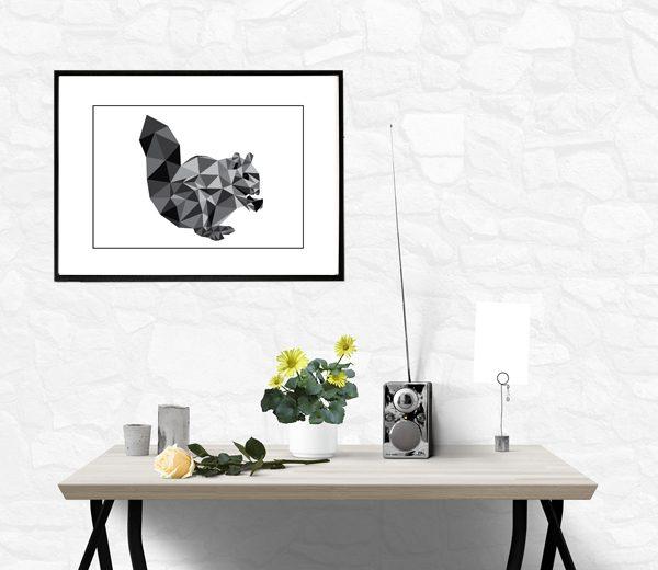egernet - illustrations tegning - billeder - fotografier i ramme