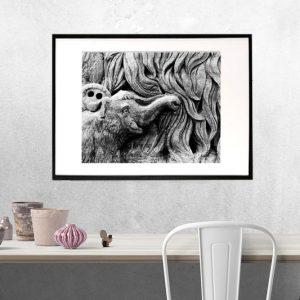Mammut - en rørende historie om en mammut unge - sort/hvid foto fra Boligpynt