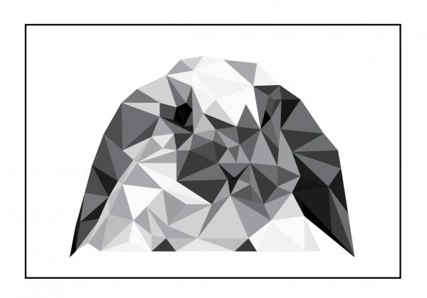 Kaninen illustrations tegning i ramme fra Boligpynt